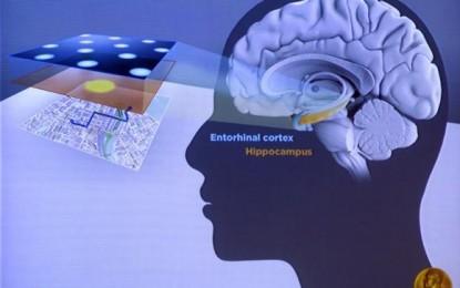 """""""GPS del cerebro"""": Nobel de Medicina 2014 premia a la psicología y a la neurología"""